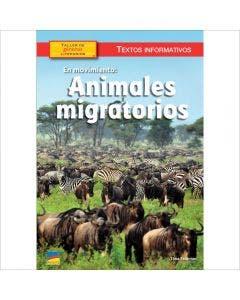 En movimiento: animales migratorios - 6-Pack