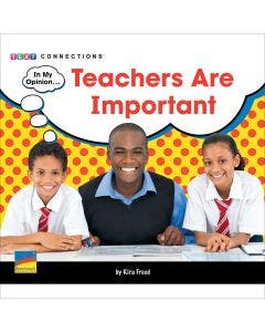 Teachers Are Important - 6-Pack