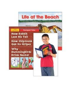 Guided Reading Strategy Summarize Information Levels A-E Book Set